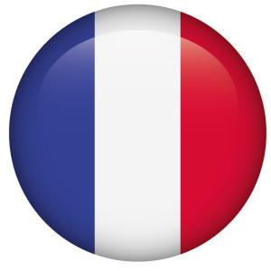 pseudomyxoma-survivor-french-flag-button